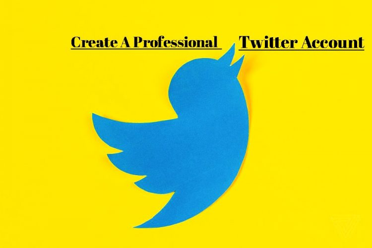 create a Professional Twitter Account